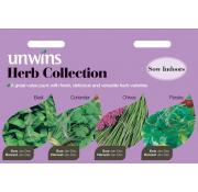 Unwines Herb Collection Pack