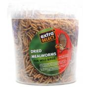 Extra Select Dried Mealworms