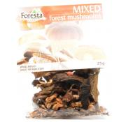 Foresta Mixed Forest Mushrooms