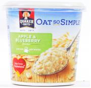 Oat So Simple Apple and Blueberry