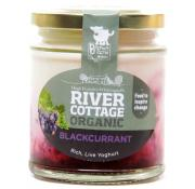 River Cottage Blackcurrant On The Bottom