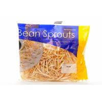 Bean Sprouts image