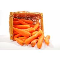 Carrots - Each image