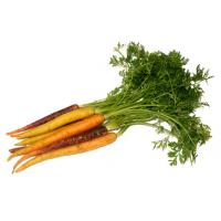 Carrots - Rainbow (Bunched) image