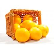 Grapefruit - Yellow - Each
